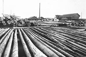Gründung der Holzhandlung Schmiederer & Co. in Ruhpolding durch Richard Schmiederer sen.